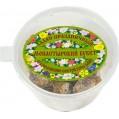 Ладан Афонский Праздничный (пластиковая упаковка) 10-12 гр
